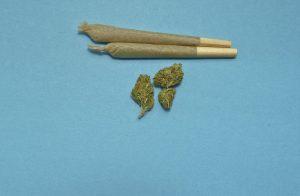 cannabis therapeutique en europe